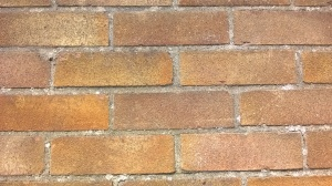 A blank, brick wall